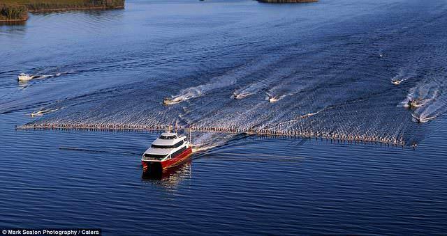 Новый воднолыжный рекорд мира установлен в Австралии