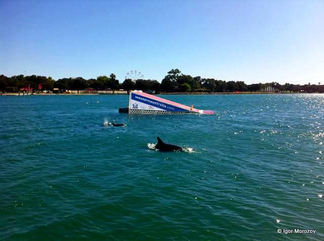 Этап Кубка мира 2012 по водным лыжам в Австралии
